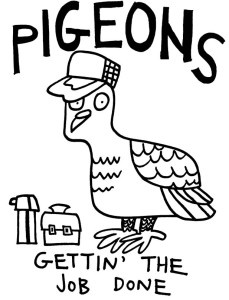 pigeons-gettin-the-job-done-final