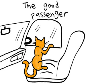 amazing-larry-good-passenger