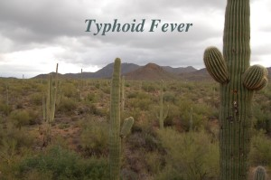 typhoid+fever