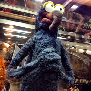 gonzo-the-great